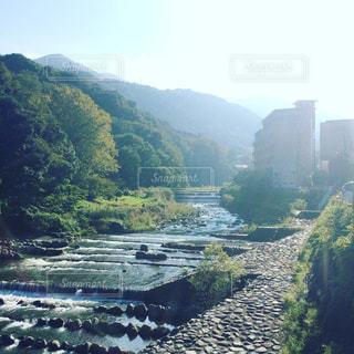 河原の写真・画像素材[693018]