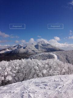 雪の写真・画像素材[695409]