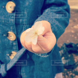 青いボールを持っている手の写真・画像素材[1080196]