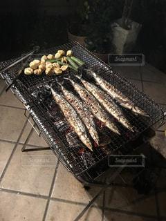 秋刀魚の写真・画像素材[1000053]