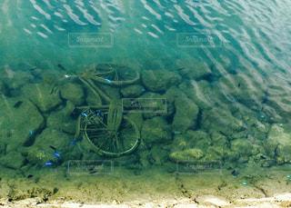 水中の中の自転車の写真・画像素材[711824]