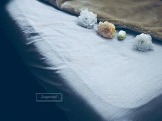 ベッドの写真・画像素材[903579]