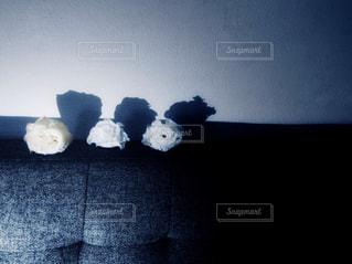 暗い部屋のベッド - No.907098