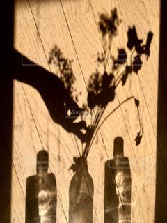 影の写真・画像素材[913593]