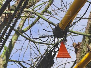 木の枝にぶら下がっている三角の写真・画像素材[914934]