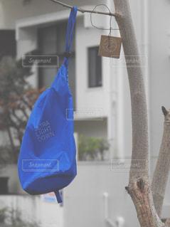 青い袋の写真・画像素材[914946]
