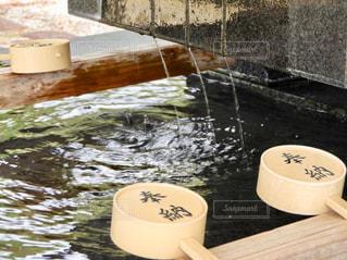 水を入れたボウルの写真・画像素材[917941]