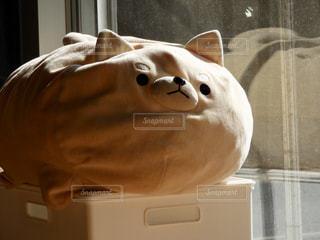 窓の前で動物のぬいぐるみの写真・画像素材[919529]
