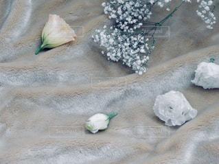 ベッドの上に広がる花の写真・画像素材[1243442]