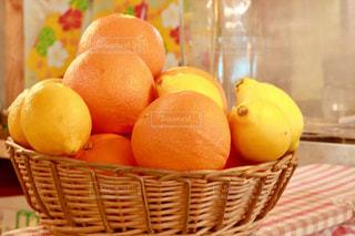 柑橘系の写真・画像素材[1548685]