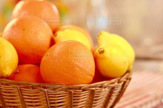 柑橘系の写真・画像素材[1548686]