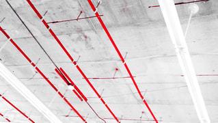 赤の写真・画像素材[698006]
