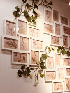 壁を額で飾るの写真・画像素材[1202805]