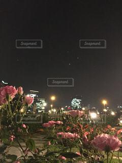花の前でステージ上を実行する人々 のグループの写真・画像素材[1204675]