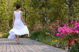 庭に立っている人の写真・画像素材[1209559]