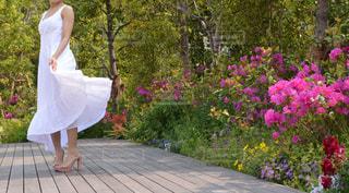 花の前に立っている人の写真・画像素材[1209560]