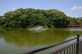 水の体の上の橋の写真・画像素材[1245706]