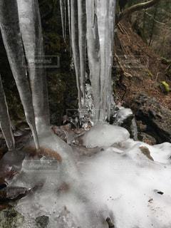 氷 冬の写真・画像素材[1794519]