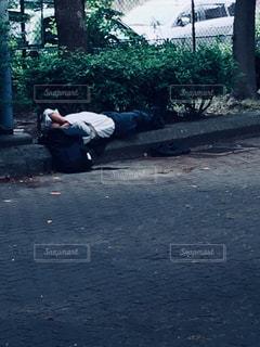 公園で寝てる男性の写真・画像素材[1865005]