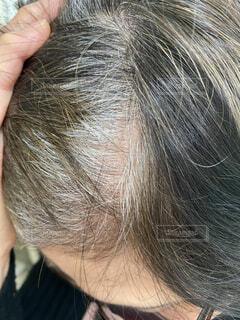 70歳女性の白髪の写真・画像素材[4293855]