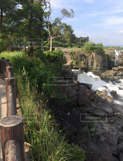 川の写真・画像素材[697024]