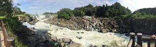 川の写真・画像素材[697026]