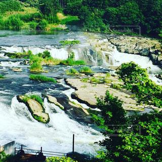 川の写真・画像素材[697029]