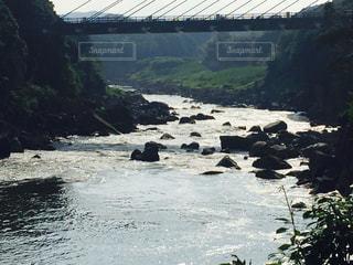 水の写真・画像素材[697064]