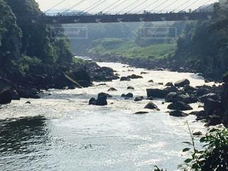 水の写真・画像素材[697065]
