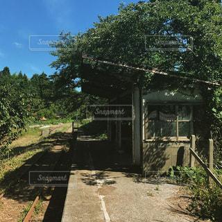 時間の止まった駅。の写真・画像素材[758443]