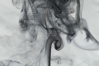 黒の写真・画像素材[28420]
