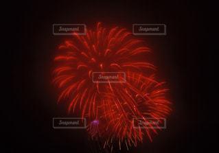 花火の写真・画像素材[697681]
