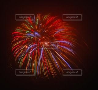 花火の写真・画像素材[697683]