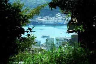 尾道の海の写真・画像素材[1462416]