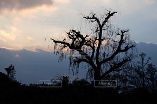 黄昏時の空の写真・画像素材[1707072]