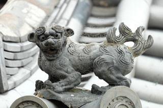 屋根に獅子の写真・画像素材[1711070]