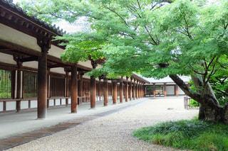 法隆寺の回廊の写真・画像素材[1711071]