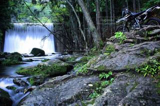 自然、癒しのバイク旅の写真・画像素材[699555]