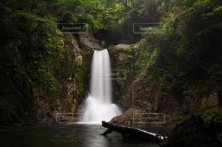 森の中の滝に癒されに・・・。の写真・画像素材[712388]