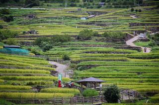 これぞ、日本の風景の写真・画像素材[713841]