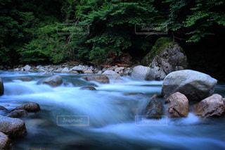 雨あがりの渓流に癒されに・・・。の写真・画像素材[713844]