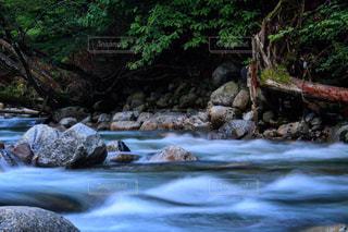 雨あがりの渓流に癒されに・・・。の写真・画像素材[713865]