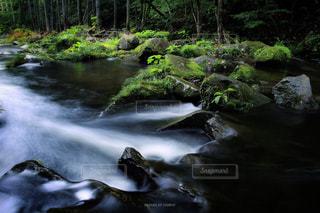 雨上がり・・・癒しの渓流の写真・画像素材[1861528]