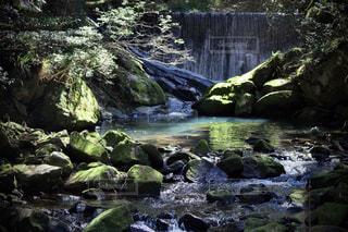 堰堤と渓流と木漏れ日の写真・画像素材[3094637]