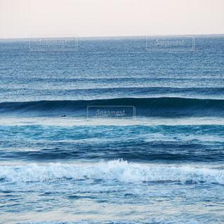 サーフィンの写真・画像素材[699588]