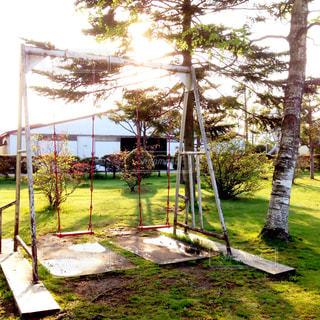 夕日に染まる公園 - No.758537