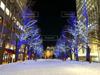 札幌 イルミネーションの写真・画像素材[1061431]