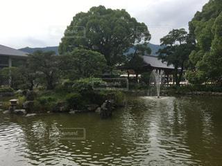 池の写真・画像素材[700904]