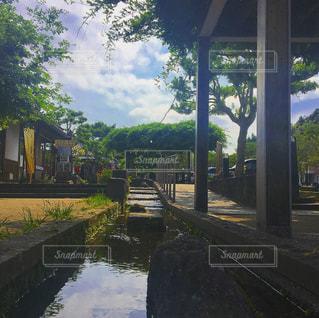 列車は川の脇に駐車します。の写真・画像素材[718369]