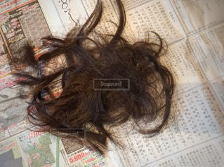 散髪後の写真・画像素材[3067358]